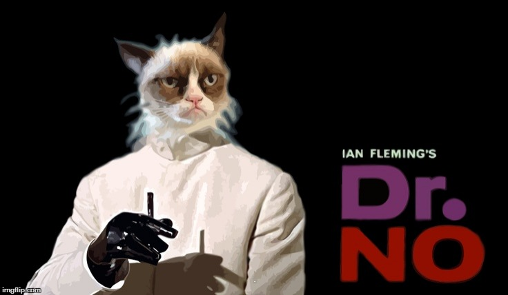 Movies week Oct 22-29 (A A SpursFanFromAround and haramisbae event) | . | image tagged in grumpy cat,james bond | made w/ Imgflip meme maker