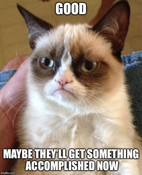 Grumpy Cat Meme | GOOD MAYBE THEY'LL GET SOMETHING ACCOMPLISHED NOW | image tagged in memes,grumpy cat | made w/ Imgflip meme maker