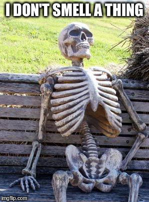 Waiting Skeleton Meme | I DON'T SMELL A THING | image tagged in memes,waiting skeleton | made w/ Imgflip meme maker