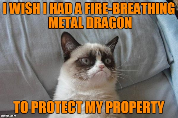 I WISH I HAD A FIRE-BREATHING METAL DRAGON TO PROTECT MY PROPERTY | made w/ Imgflip meme maker