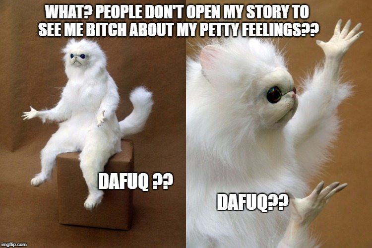 Instagram Story | WHAT? PEOPLE DON'T OPEN MY STORY TO SEE ME B**CH ABOUT MY PETTY FEELINGS?? DAFUQ ??                                                          | image tagged in dafuq | made w/ Imgflip meme maker