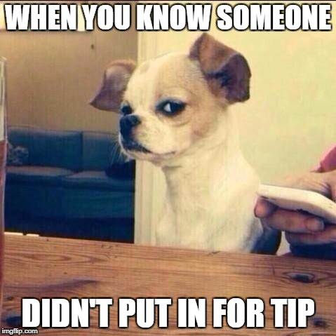 Skeptical Chihuahua | WHEN YOU KNOW SOMEONE DIDN'T PUT IN FOR TIP | image tagged in skeptical chihuahua | made w/ Imgflip meme maker