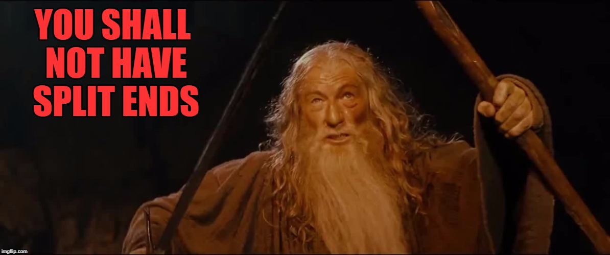 YOU SHALL NOT HAVE SPLIT ENDS | made w/ Imgflip meme maker