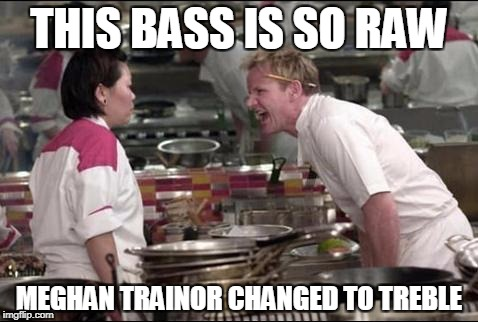 Angry Chef Gordon Ramsay Meme | THIS BASS IS SO RAW MEGHAN TRAINOR CHANGED TO TREBLE | image tagged in memes,angry chef gordon ramsay | made w/ Imgflip meme maker