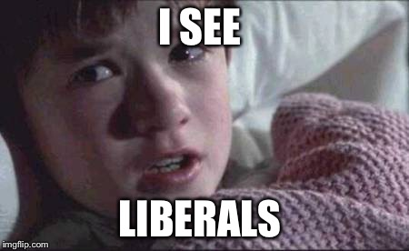 Pray for this child | I SEE LIBERALS | image tagged in memes,i see dead people,liberals,help me,do you need help | made w/ Imgflip meme maker