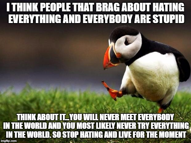 Wise words from a wise bird as people seem to brag about hating everything and everybody these days! | I THINK PEOPLE THAT BRAG ABOUT HATING EVERYTHING AND EVERYBODY ARE STUPID THINK ABOUT IT...YOU WILL NEVER MEET EVERYBODY IN THE WORLD AND YO | image tagged in memes,unpopular opinion puffin | made w/ Imgflip meme maker