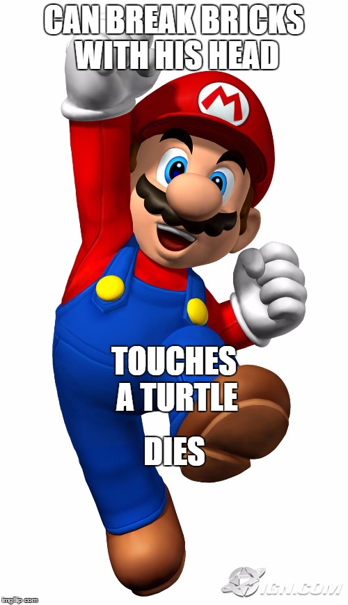 Super Mario | CAN BREAK BRICKS WITH HIS HEAD DIES TOUCHES A TURTLE | image tagged in super mario | made w/ Imgflip meme maker