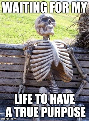 i ask why? :thonk: | WAITING FOR MY LIFE TO HAVE A TRUE PURPOSE | image tagged in memes,waiting skeleton,life questions,funny,conspiracy | made w/ Imgflip meme maker