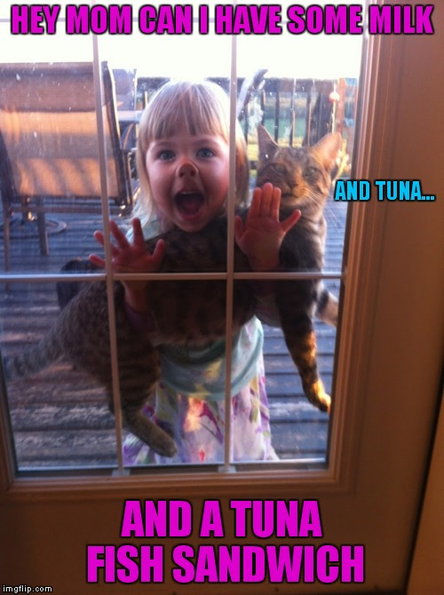 All animals seem to know little kids drop the most food! | HEY MOM CAN I HAVE SOME MILK AND A TUNA FISH SANDWICH AND TUNA... | image tagged in little girl,cat food,manipulation | made w/ Imgflip meme maker