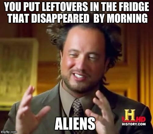 Ancient Aliens Meme | YOU PUT LEFTOVERS IN THE FRIDGE THAT DISAPPEARED  BY MORNING ALIENS | image tagged in memes,ancient aliens | made w/ Imgflip meme maker