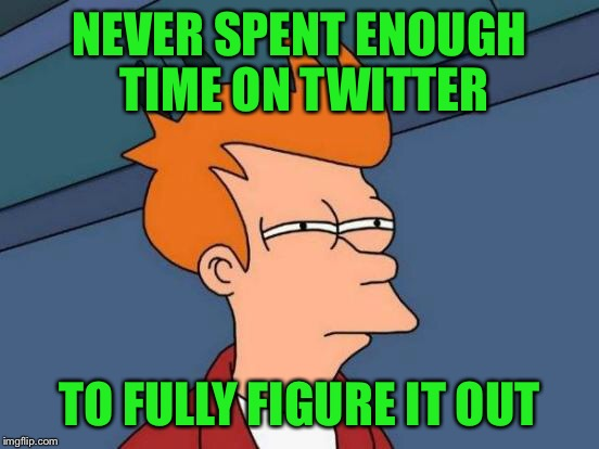 Futurama Fry Meme | NEVER SPENT ENOUGH TIME ON TWITTER TO FULLY FIGURE IT OUT | image tagged in memes,futurama fry | made w/ Imgflip meme maker