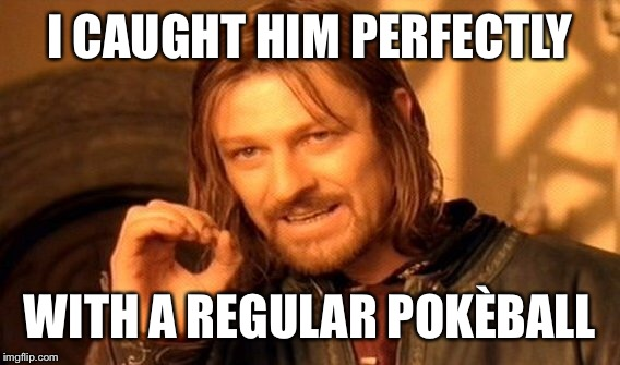 One Does Not Simply Meme | I CAUGHT HIM PERFECTLY WITH A REGULAR POKÈBALL | image tagged in memes,one does not simply | made w/ Imgflip meme maker
