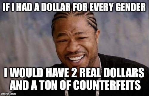 Yo Dawg Heard You Meme | IF I HAD A DOLLAR FOR EVERY GENDER I WOULD HAVE 2 REAL DOLLARS AND A TON OF COUNTERFEITS | image tagged in memes,yo dawg heard you | made w/ Imgflip meme maker