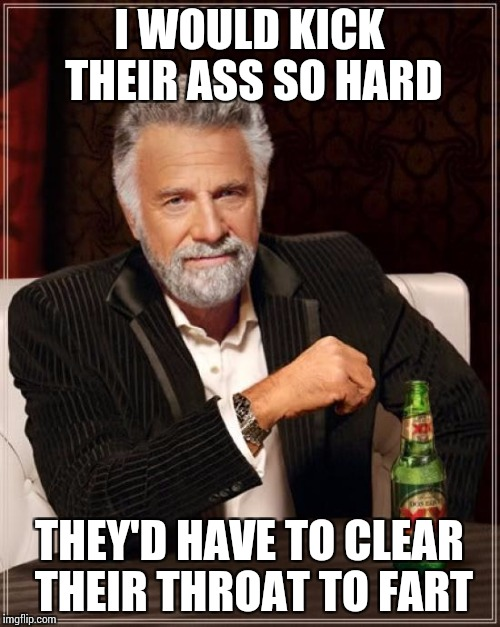 The Most Interesting Man In The World Meme | I WOULD KICK THEIR ASS SO HARD THEY'D HAVE TO CLEAR THEIR THROAT TO FART | image tagged in memes,the most interesting man in the world | made w/ Imgflip meme maker