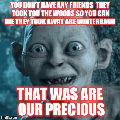 Gollum Meme | YOU DON'T HAVE ANY FRIENDS  THEY TOOK YOU THE WOODS SO YOU CAN DIE THEY TOOK AWAY ARE WINTERBAGU THAT WAS ARE OUR PRECIOUS | image tagged in memes,gollum | made w/ Imgflip meme maker