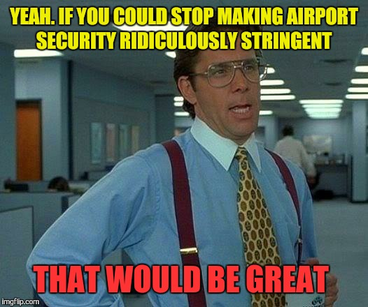 That Would Be Great Meme | YEAH. IF YOU COULD STOP MAKING AIRPORT SECURITY RIDICULOUSLY STRINGENT THAT WOULD BE GREAT | image tagged in memes,that would be great | made w/ Imgflip meme maker