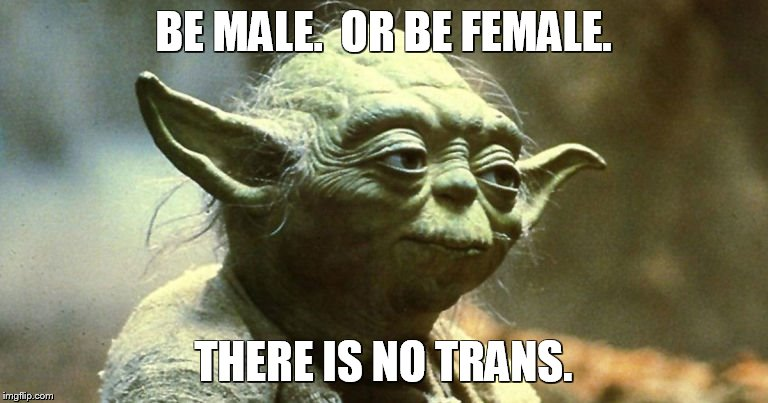 There is no trans. | BE MALE.  OR BE FEMALE. THERE IS NO TRANS. | image tagged in transgender | made w/ Imgflip meme maker