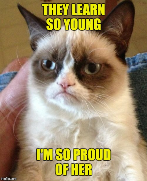 Grumpy Cat Meme | THEY LEARN SO YOUNG I'M SO PROUD OF HER | image tagged in memes,grumpy cat | made w/ Imgflip meme maker