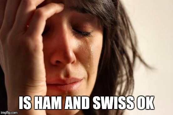 First World Problems Meme | IS HAM AND SWISS OK | image tagged in memes,first world problems | made w/ Imgflip meme maker