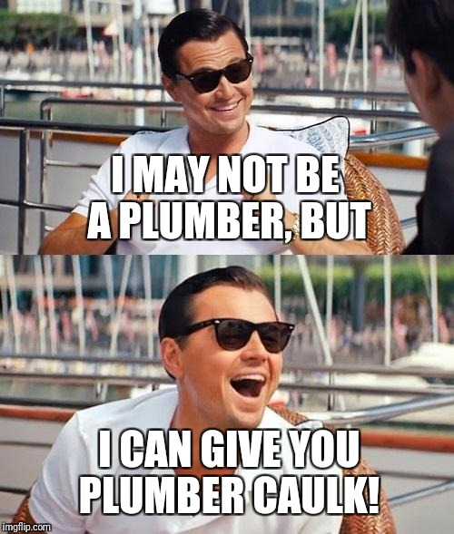 Leonardo Dicaprio Wolf Of Wall Street Meme | I MAY NOT BE A PLUMBER, BUT I CAN GIVE YOU PLUMBER CAULK! | image tagged in memes,leonardo dicaprio wolf of wall street | made w/ Imgflip meme maker