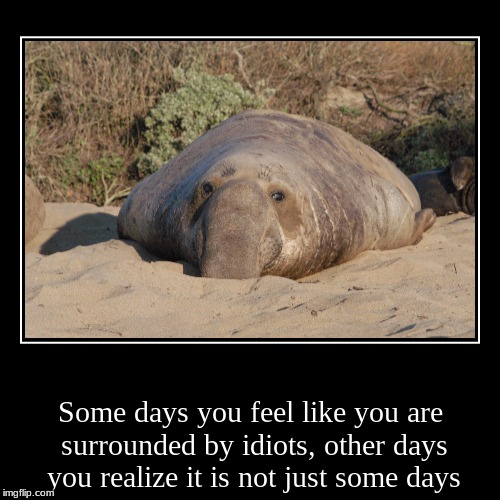 Some days you feel like you are surrounded by idiots, other days you realize it is not just some days | image tagged in funny,demotivationals | made w/ Imgflip demotivational maker