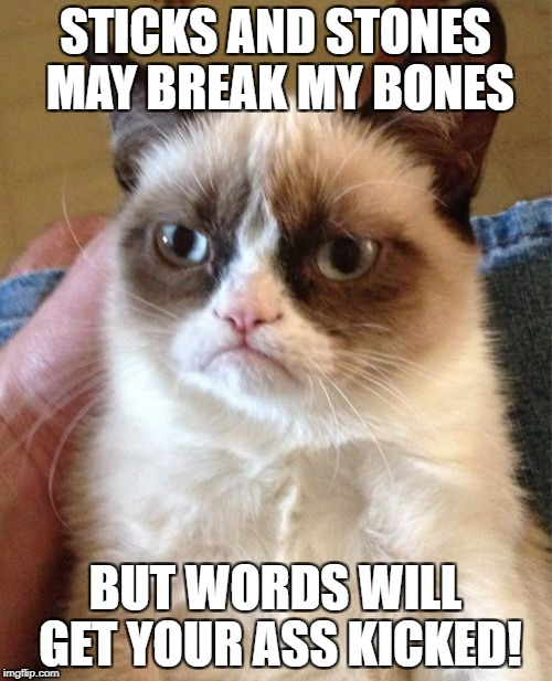 Grumpy Cat Meme | STICKS AND STONES MAY BREAK MY BONES BUT WORDS WILL GET YOUR ASS KICKED! | image tagged in memes,grumpy cat | made w/ Imgflip meme maker