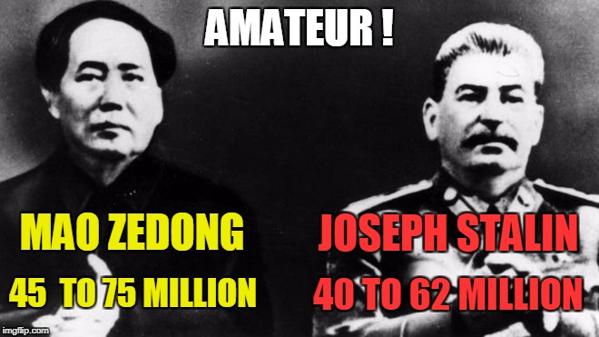 AMATEUR ! MAO ZEDONG 45  TO 75 MILLION JOSEPH STALIN 40 TO 62 MILLION | made w/ Imgflip meme maker
