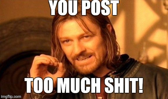 One Does Not Simply Meme | YOU POST TOO MUCH SHIT! | image tagged in memes,one does not simply | made w/ Imgflip meme maker