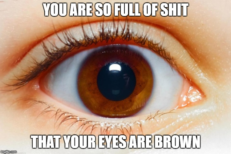 YOU ARE SO FULL OF SHIT THAT YOUR EYES ARE BROWN | image tagged in brown eyes,so full of shit,your eyes are brown,full of shit | made w/ Imgflip meme maker