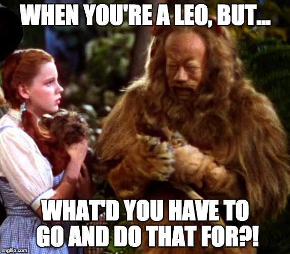 WHEN YOU'RE A LEO, BUT... WHAT'D YOU HAVE TO GO AND DO THAT FOR?! | image tagged in leo,lion,cowardly lion,coward | made w/ Imgflip meme maker
