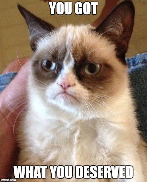 Grumpy Cat Meme | YOU GOT WHAT YOU DESERVED | image tagged in memes,grumpy cat | made w/ Imgflip meme maker