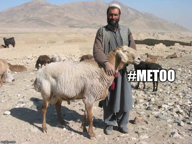 Isis Weinstein  | #METOO | image tagged in harvey weinstein,isis,metoo,goat,taliban,hillary clinton | made w/ Imgflip meme maker