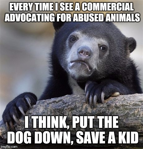 Confession Bear Meme | EVERY TIME I SEE A COMMERCIAL ADVOCATING FOR ABUSED ANIMALS I THINK, PUT THE DOG DOWN, SAVE A KID | image tagged in memes,confession bear | made w/ Imgflip meme maker
