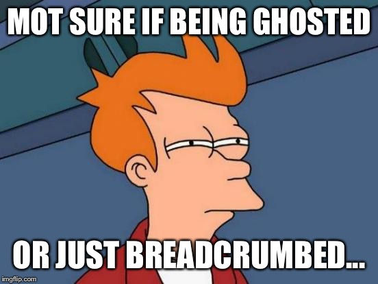 Futurama Fry Meme | MOT SURE IF BEING GHOSTED OR JUST BREADCRUMBED... | image tagged in memes,futurama fry | made w/ Imgflip meme maker