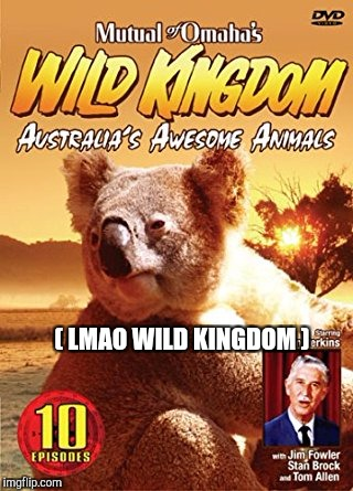 ( LMAO WILD KINGDOM ) | made w/ Imgflip meme maker