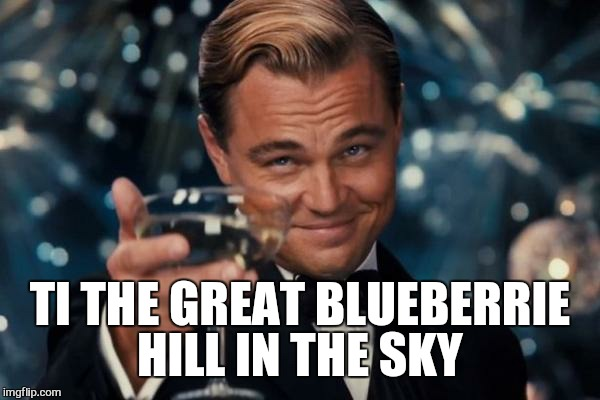 Leonardo Dicaprio Cheers Meme | TI THE GREAT BLUEBERRIE HILL IN THE SKY | image tagged in memes,leonardo dicaprio cheers | made w/ Imgflip meme maker