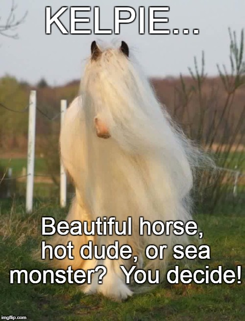 KELPIE... Beautiful horse, hot dude, or sea monster?  You decide! | image tagged in perfect hair day horse | made w/ Imgflip meme maker