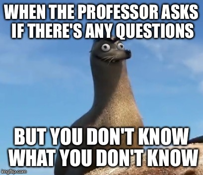 gerald finding dory | WHEN THE PROFESSOR ASKS IF THERE'S ANY QUESTIONS BUT YOU DON'T KNOW WHAT YOU DON'T KNOW | image tagged in gerald finding dory | made w/ Imgflip meme maker