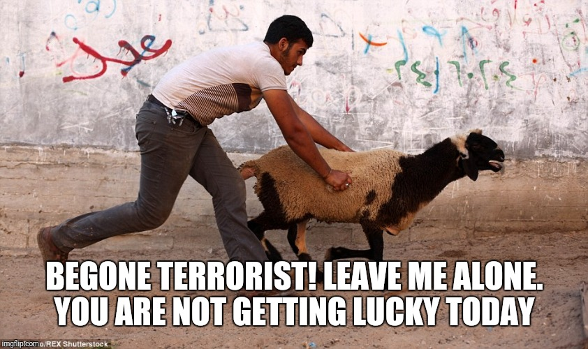 BEGONE TERRORIST! LEAVE ME ALONE. YOU ARE NOT GETTING LUCKY TODAY | image tagged in terrorist | made w/ Imgflip meme maker