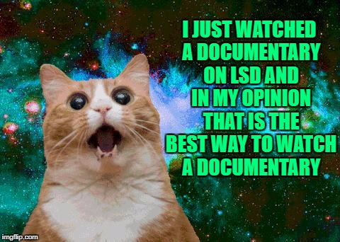 lsd brownies | I JUST WATCHED A DOCUMENTARY ON LSD AND IN MY OPINION THAT IS THE BEST WAY TO WATCH A DOCUMENTARY | image tagged in lsd brownies,funny,funny memes,memes,cats | made w/ Imgflip meme maker