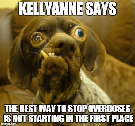KELLYANNE SAYS THE BEST WAY TO STOP OVERDOSES IS NOT STARTING IN THE FIRST PLACE | image tagged in kellyanne conway | made w/ Imgflip meme maker