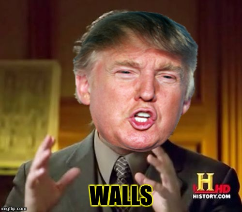 walls just walls | WALLS | image tagged in donald trump,wall,ancient aliens | made w/ Imgflip meme maker
