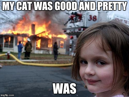 Disaster Girl Meme | MY CAT WAS GOOD AND PRETTY WAS | image tagged in memes,disaster girl | made w/ Imgflip meme maker