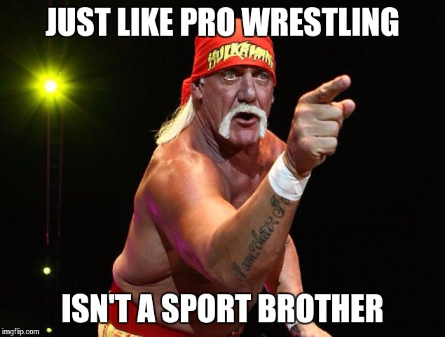 JUST LIKE PRO WRESTLING ISN'T A SPORT BROTHER | made w/ Imgflip meme maker