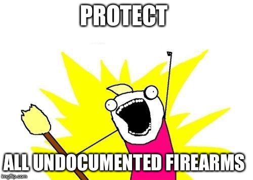 X All The Y Meme | PROTECT ALL UNDOCUMENTED FIREARMS | image tagged in memes,x all the y | made w/ Imgflip meme maker