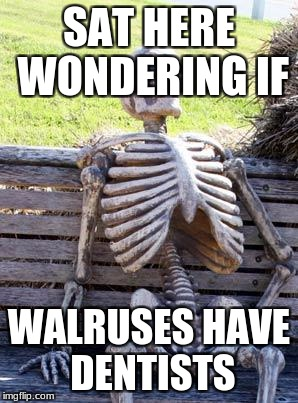 Waiting Skeleton Meme | SAT HERE WONDERING IF WALRUSES HAVE DENTISTS | image tagged in memes,waiting skeleton | made w/ Imgflip meme maker