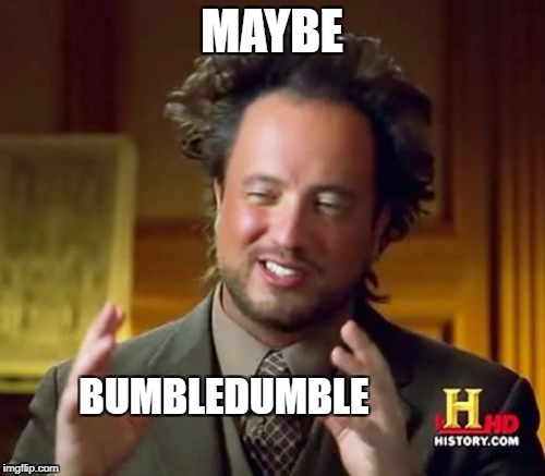 Ancient Aliens Meme | MAYBE BUMBLEDUMBLE | image tagged in memes,ancient aliens | made w/ Imgflip meme maker