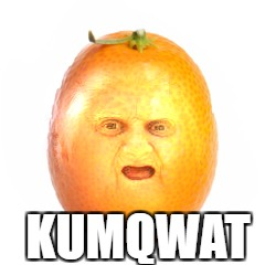 This had to happen eventually | KUMQWAT | image tagged in wat,kumquat | made w/ Imgflip meme maker