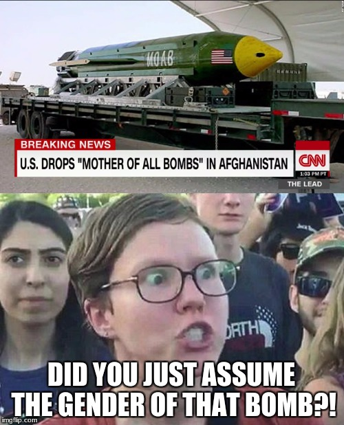 Triggered liberal | DID YOU JUST ASSUME THE GENDER OF THAT BOMB?! | image tagged in triggered,moab,bomb,memes | made w/ Imgflip meme maker