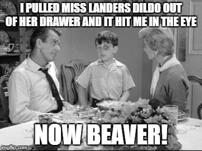 I PULLED MISS LANDERS D**DO OUT OF HER DRAWER AND IT HIT ME IN THE EYE NOW BEAVER! | image tagged in black eyed beaver | made w/ Imgflip meme maker